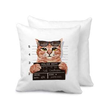 Cool cat, Μαξιλάρι καναπέ 40x40cm περιέχεται το γέμισμα