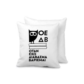 ΟΕΔΒ, Μαξιλάρι καναπέ 40x40cm περιέχεται το γέμισμα