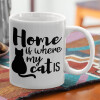 Home is where my cat is!