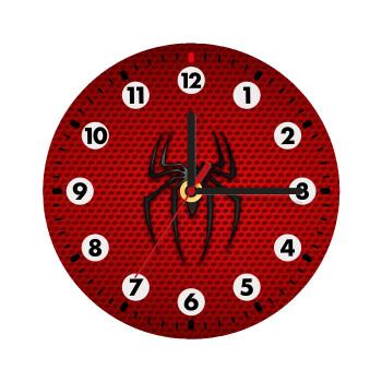 Άνθρωπος αράχνη,